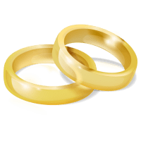 With this Ring I Thee Wedd